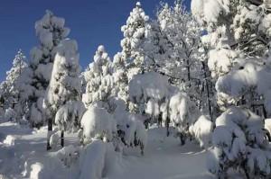 snow-storm-300x199